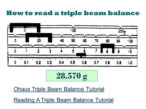 Reading A Balance Scale Worksheet