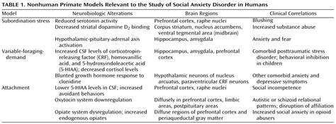 Anxiety Disorder Essay Social by Essay About Social Anxiety Disorder
