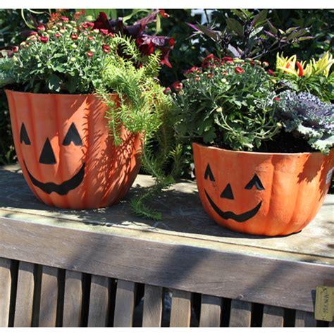 Pumpkin Planter by What Does Npk In Fertilizer Anyway