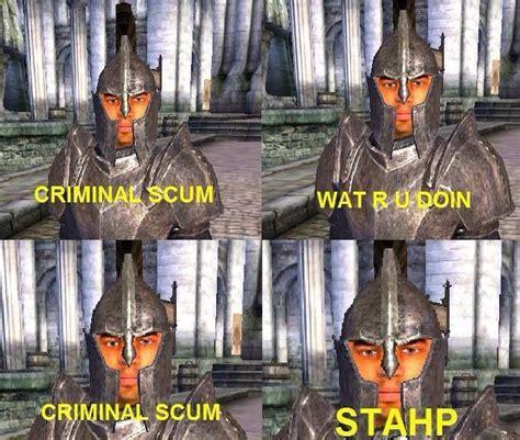 Oblivion Memes - elder scrolls oblivion guards be trippin lol elder