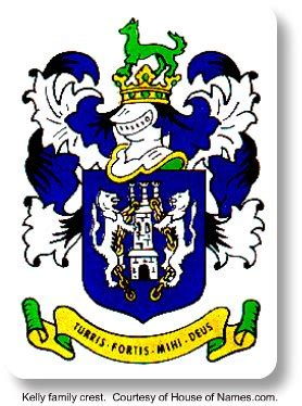 house of names com irish family crests great tips for expressing your irish family pride