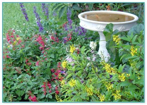 best way to plant a vegetable garden best way to plant a vegetable garden