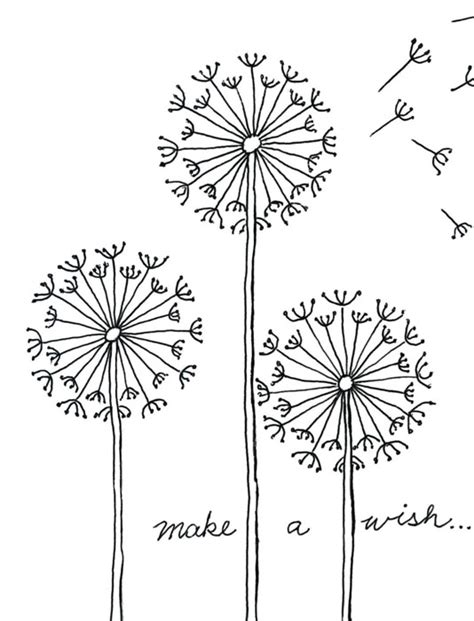 pin coloring page dandelion img 17073 on pinterest