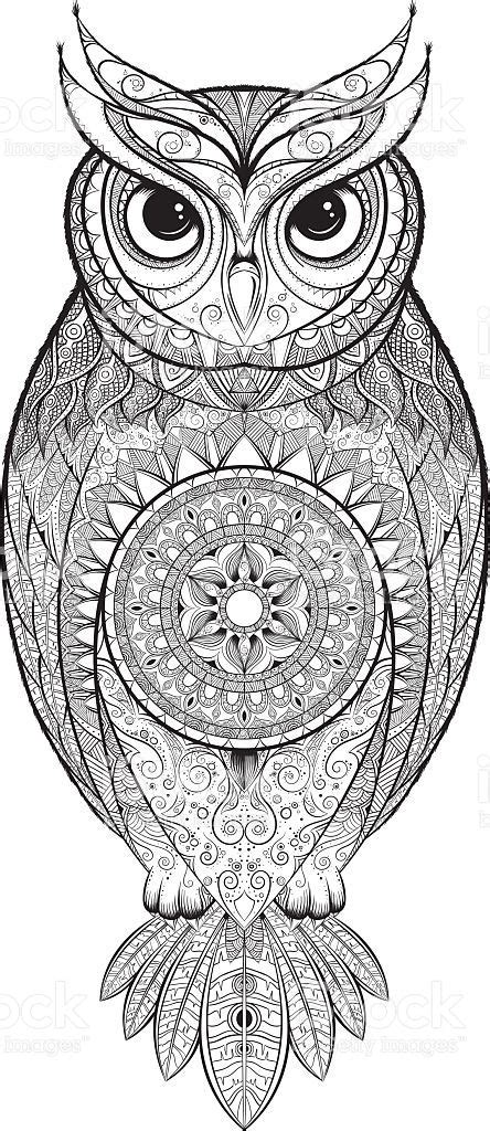 owl  tribal ornament hand drawn vector illustration