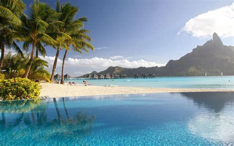 tropical resort palm trees pool sea wallpaper beach