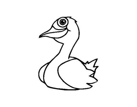 imagenes para colorear un pato dibujo de un pato para colorear dibujos net