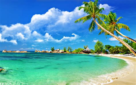 incredible collection  beach wallpapers funpulp
