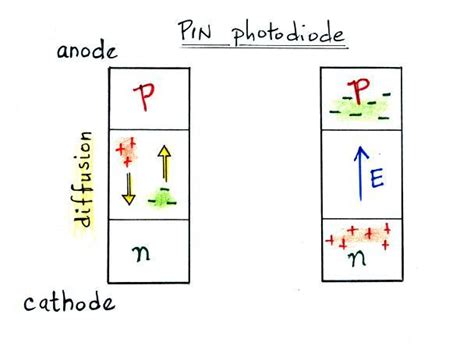 avalanche photodiode electric field lecture 25 ground based optical observations of lightning
