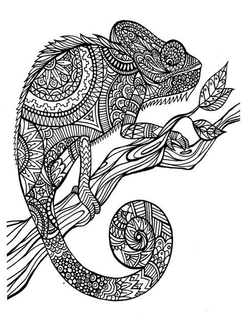 coloring pages of pattern animals art therapy 30 disegni da stare e colorare