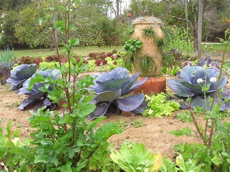 fare l orto in giardino orto giardino ortaggi orto per il giardino
