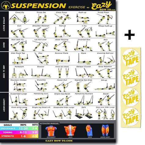 eazy how to suspension cables exercise workout trx poster