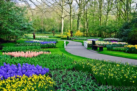 Amsterdam Flower Garden Amazing Magazine The World S Largest Flower Garden Keukenhof The Netherlands