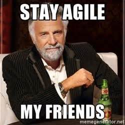 Agile Meme - 8 best agile images on pinterest memes humor funny