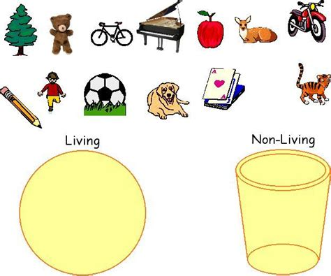 living things non living things living v nonliving picture sort google search science