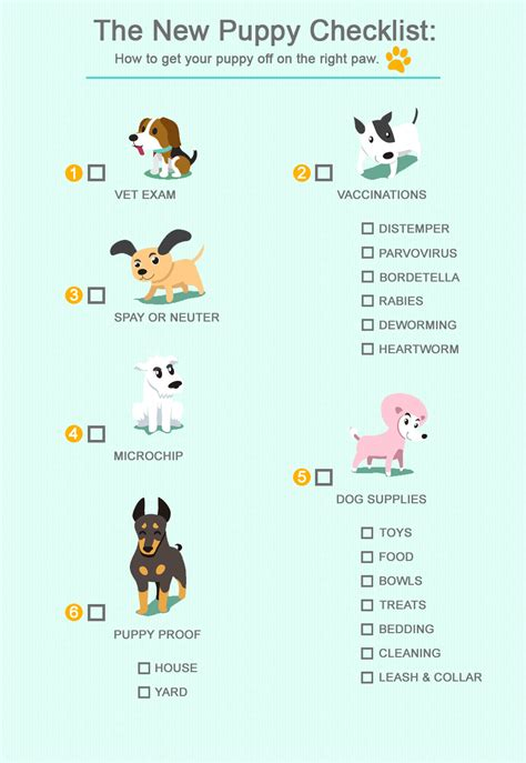 what do i need for a new puppy veterinarian new puppy checklist