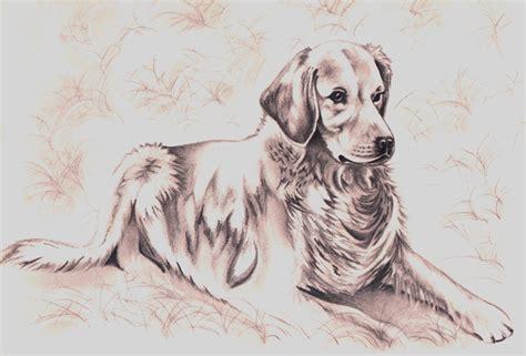 imagenes a lapiz de perritos imagenes perros en lapiz imagui