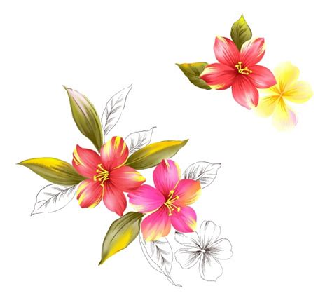 flower design materials hand painted floral source file design material free