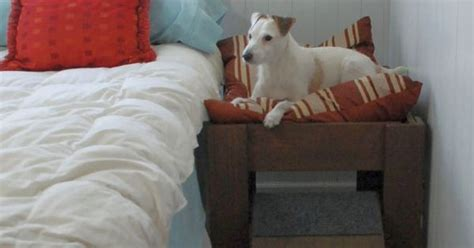 wood raised dog bed furniture put  pet