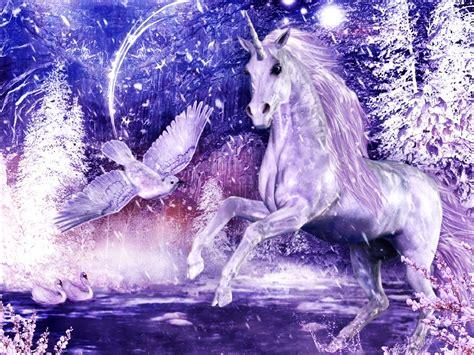 imagenes de unicornios hermosos con movimiento fondos de pantalla de unicornios fondos de pantalla y