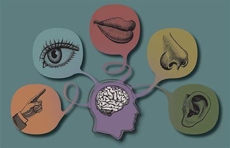 imagenes marketing sensorial 191 cu 225 l de los 5 sentidos motiva m 225 s las compras insights