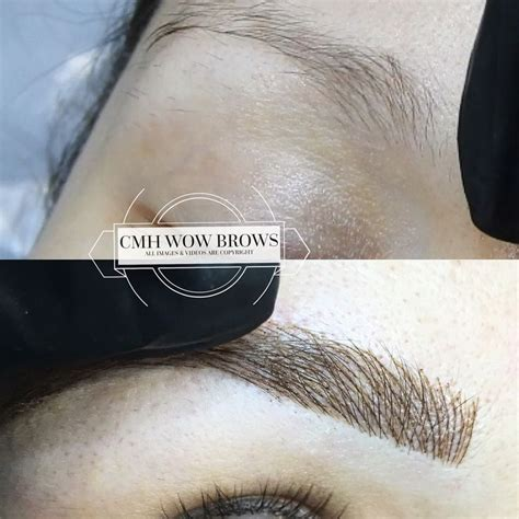 feather tattoo melbourne 121 best cmh tayla made wow brows feather touch