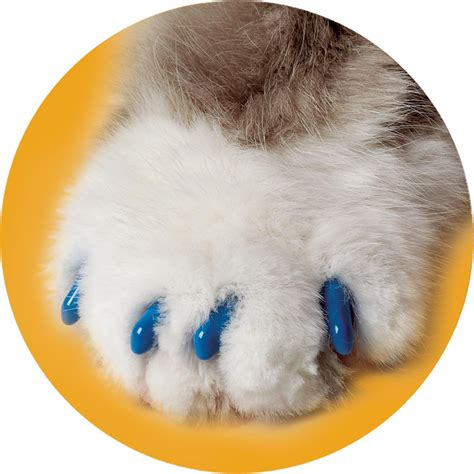nail covers soft claws blue cat nail caps petco