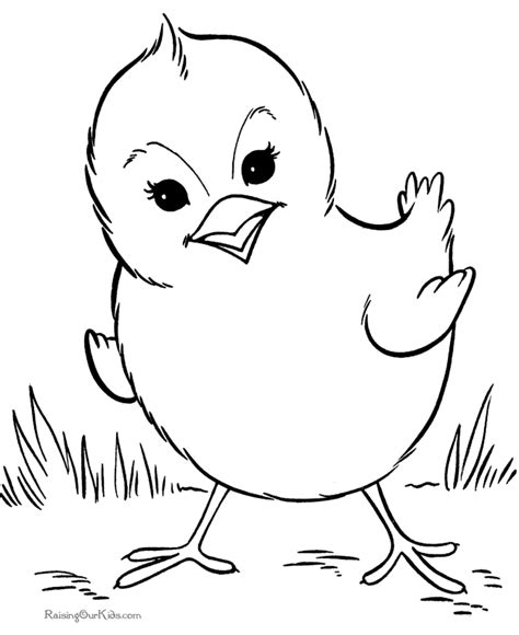coloring pages of animals and birds bird coloring sheet and pages