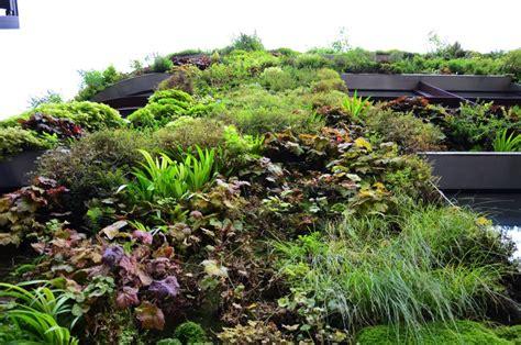 Landscape Fabric Vertical Garden Vertical Gardens B Rocke Landscaping