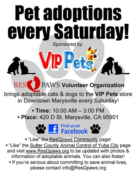 adoption events pet adoption event flyer www pixshark images galleries with a bite