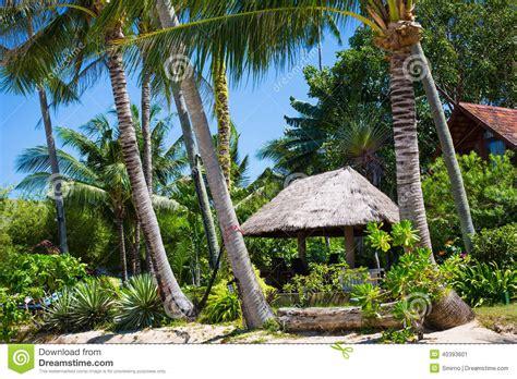 un hutte hutte avec un toit couvert de chaume parmi des cocotiers