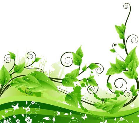 wallpaper daun mint vineyard boise women s retreat w hole vineyard boise