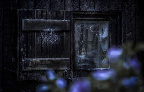 Hp Desktop 251 016l wallpaper the inside window scream horror