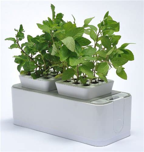 Countertop Hydroponics by 6 Kinds Of Hydroponic Gardening Systems