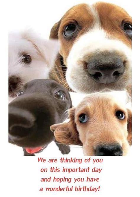 Puppy Birthday Cards Dog Birthday Cards Facebook Happy Birthday Card With