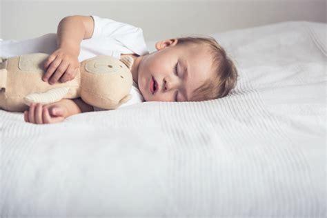 Einschlafhilfe F 252 R Das Baby Zwergehuus Magazin