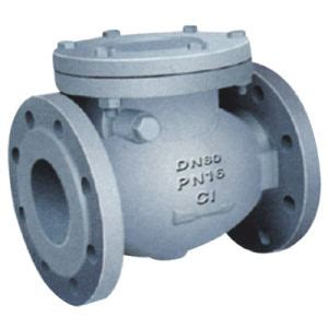 China Swing Type Check Valve H44t 10 China Swing Check