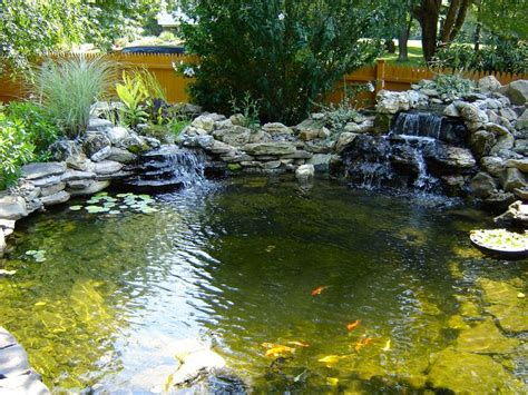 backyard ecosystem 13 best ecosystem ponds fish ponds images on pinterest