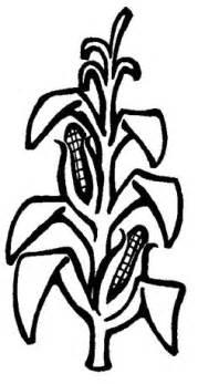 Corn Stalk Template by Corn Plant Clip Search Exploring Creation