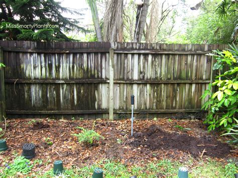 diy arbor trellis 28 diy arbor trellis how to build a grape arbor