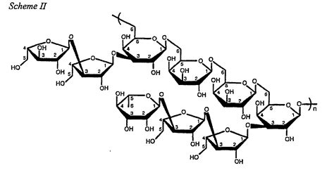 diagram of a polysaccharide patent ep1343826b1 polysaccharide compound immune