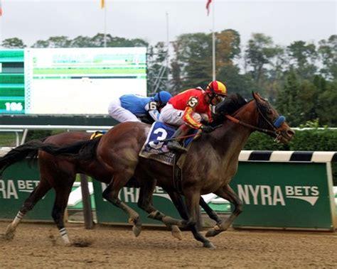 horse outside wins again for racing club norahmac racing hoppertunity rallies in jockey club gold cup bloodhorse com