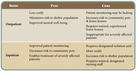 Outpatient Detox Units Vs Institutions by A Shelter Based Approach To Cpv Treatment