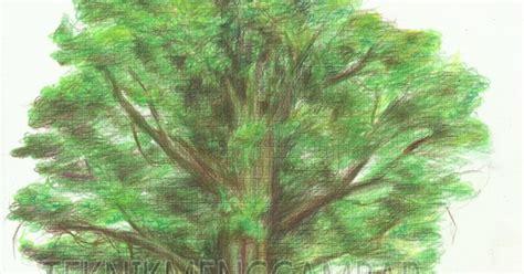 tutorial gambar pohon cara menggambar pohon dengan pensil warna teknik menggambar