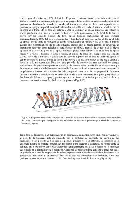 Consultorio Banchette Anatoma De La Extremidad Inferior Apuntes Tareas 28