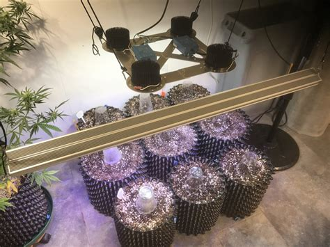 diy cob grow light diy led grow light cob do it your self