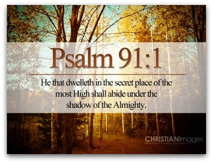 psalm 91 god s umbrella of protection books god knew you before you were born archives the choice
