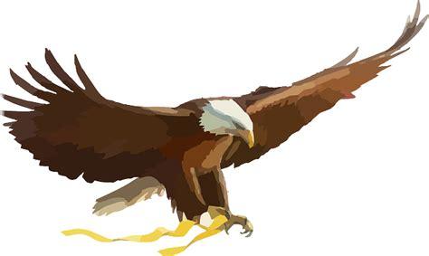 imagenes png aguila vector gratis 193 guila calva 193 guila ave de presa imagen