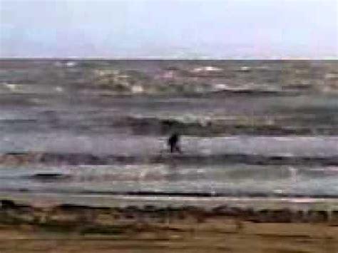 Eyeliner Putri Duyung pics for gt putri duyung terdar di pantai