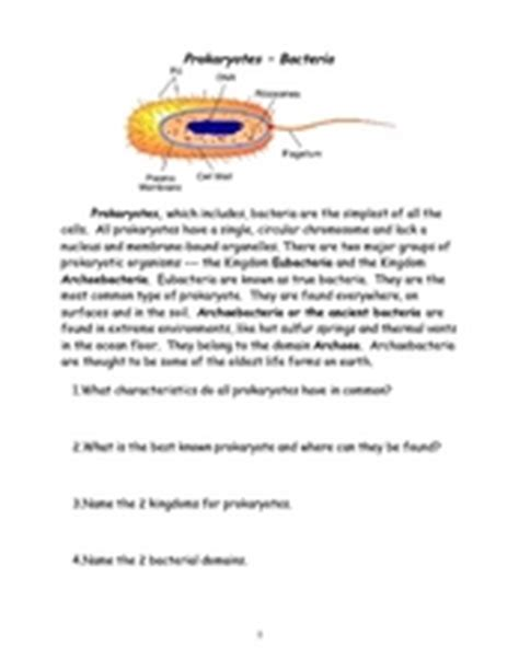 Prokaryote Coloring Worksheet Answers by Prokaryotes Bacteria 6th 9th Grade Worksheet Lesson Planet