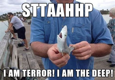 Baby Shark Meme | photos guaranteed to make you laugh every time barnorama